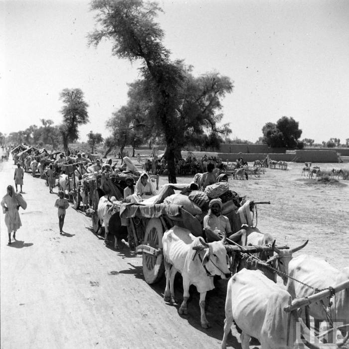 Bullock carts India partition