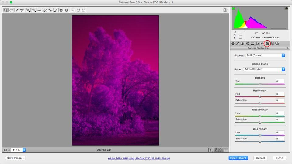 Processing Infrared Photos in Adobe Camera Raw