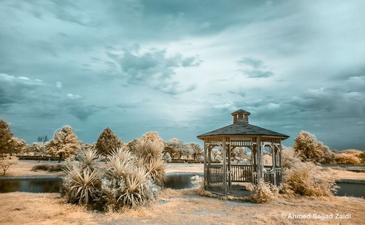 Infrared of a gazebo in a park