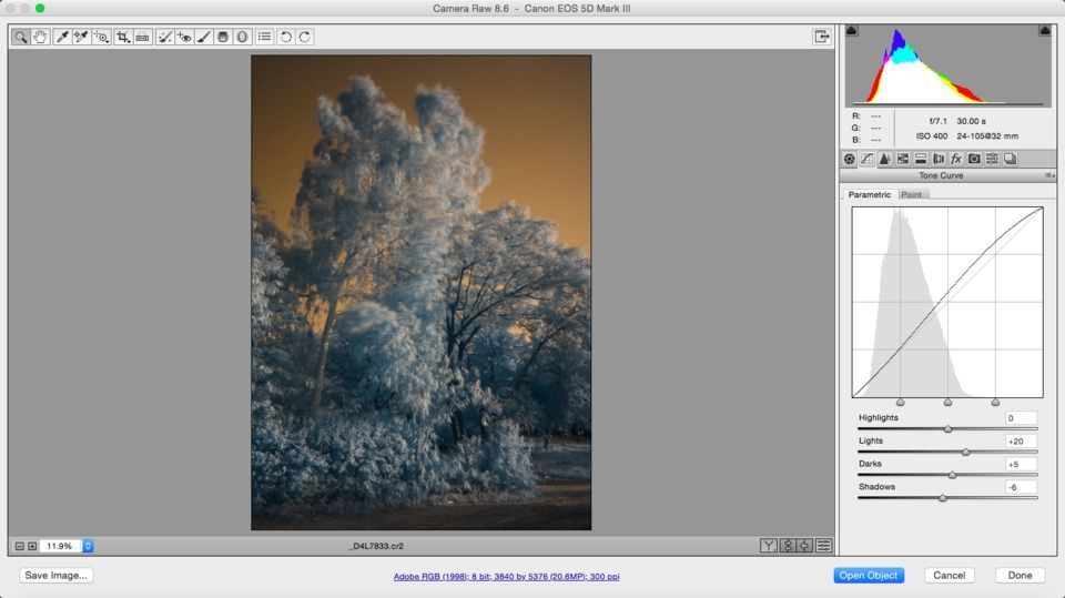 Infrared Raw processing tone curve