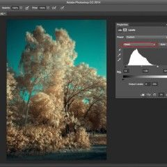 Processing Infrared Photos in Camera Raw and Photoshop