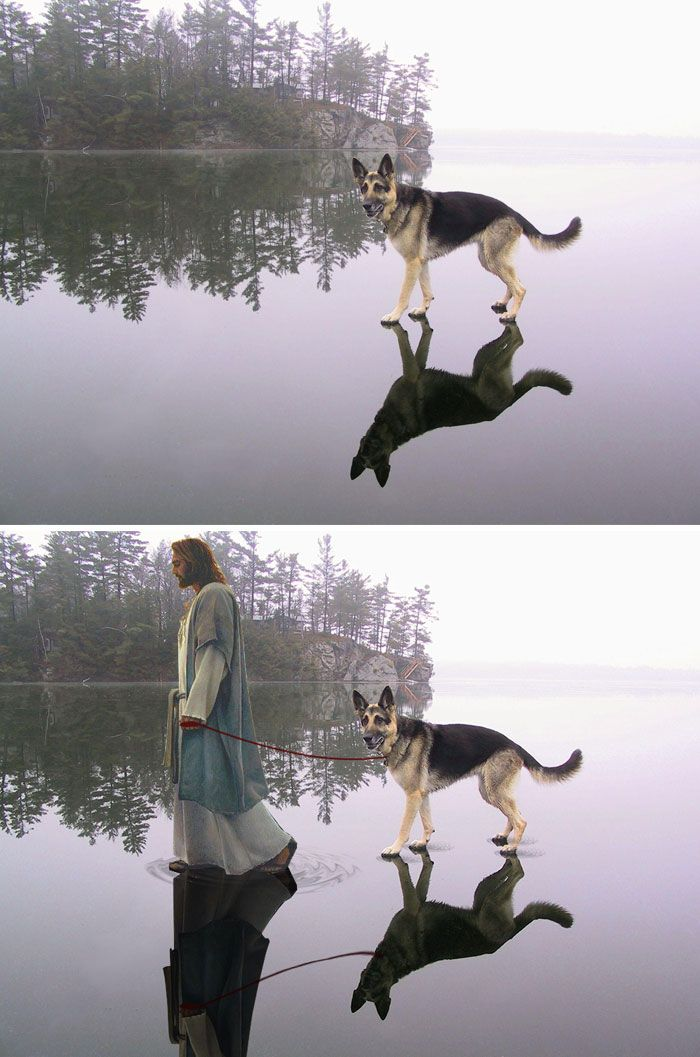 Photoshop fun Jesus and dog on water